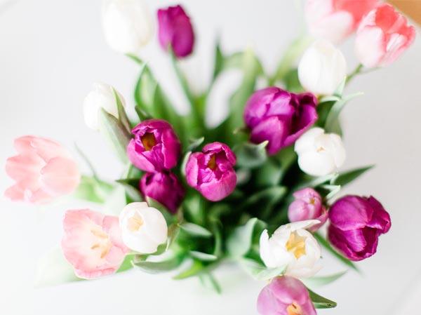 Blumen von Alicia Utrillas Photography Portrait- und Hochzeitsfotografin aus Frankfurt auf http://www.aliciautrillas.de